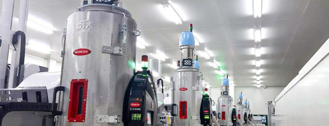 Moretto: achieving sustainable profitability in today's plastics industry